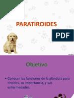 Paratiriodes Fisiología Animal