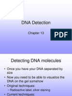 13 Detection
