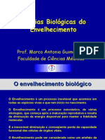 Teorias Biologic As Do Envelhecimento-100204091417-Phpapp01