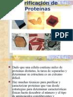 Purificacion_proteinas