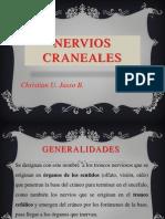 NERVIOS CRANEALES