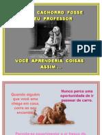 Se Um Cachorro Fosse Professor
