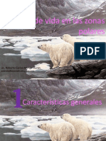 Zonas polares