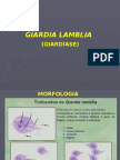 RPH - Parasito - Giardiase Balantidiase e Amebiase