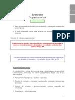 Estrutura Formal x Informal x Matricial x Funcional