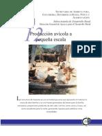 Produccion Avicola