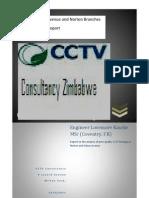 A CCD Camera Problems Report