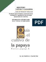 Papaya Manual Bueno Costa Rica