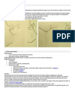 Tipos de sutura