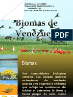 Biomas de Venezuela - Copia