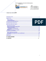 Informe Pmaa Guaduas v1 7 Nov 2011