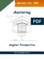 Mastering Angular Perspective