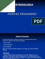 trigemino nervio oftalmico