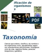 taxonomia2 - 1er grupo