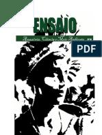 COPIAO - ENSAIO nº 01