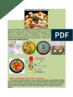 Infosheet Sobre Manego Higienico de Los pdf