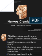 03 T2_Nervos_Cranianos