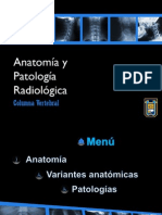 Trabajo de Anatomia a Columna