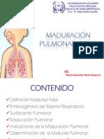 maduracionpulmonarfetal-100718205055-phpapp02