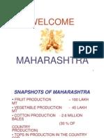 Agricultural Mkting Spots Imp 2006 > Maharastra