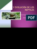 Origen y evolución de los reptiles
