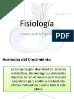 Fisiologia de Las Hormonas Final