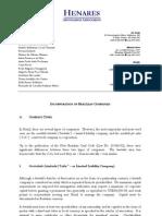 Brazilian Company Types Text 19 09 2011