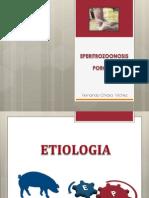 eperitrozonosisi