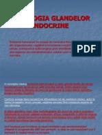 Fiziologia Glandelor Endocrine