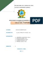 Ciclo Biogeoquimico Del Fosforo