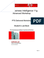 PTS BI11g Advanced Workshop October 2010