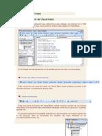 El Editor de Visual Basic