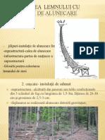 Colectarea  lemnului cu instalaţii de alunecare