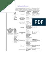 Tabela hormônios sistema endócrino