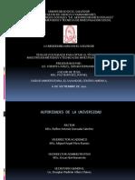 PresentaciónTESIS MISION MILAGRO EN E.S.