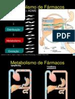 Aula Metabolismo de f Rmacos