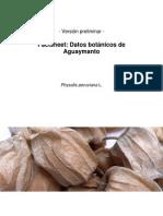Aguaymanto Factsheet Preliminar 25-10-2011