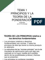Principio y La Teoria de Ponderacion