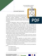 Estrutura e Comunicaçao Organizacional