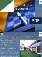 El Autocuidado y La Salud Laboral Campus Velasquez Universidad de Tarapaca.pptcopia