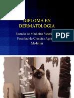 1 a)Micosis Cutánea