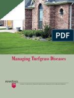 Managing Turf Diseases