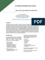 Paper Lixiviacion en Pilas y Bateas