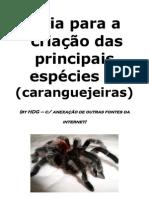 Guia de criaçao de caranguejeiras
