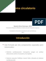 9.SISTEMA CIRCULATORIO