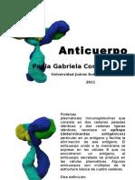 Anticuerpo P.G.C.G.