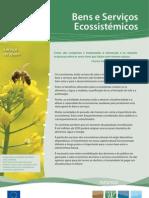 Bens e Serviços Ecossistemicos
