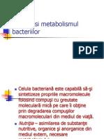 Nutritia Si Metabolismul Bacteriilor