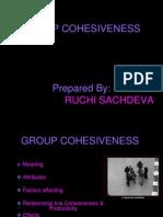 24279343 Group Cohesiveness