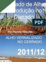Renato Mendes - Mercado de alho e produção no Cerrado - ANAPA